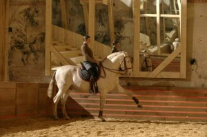 Versailles Great Stables