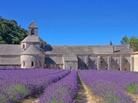 Private Tour Provence from French Riviera