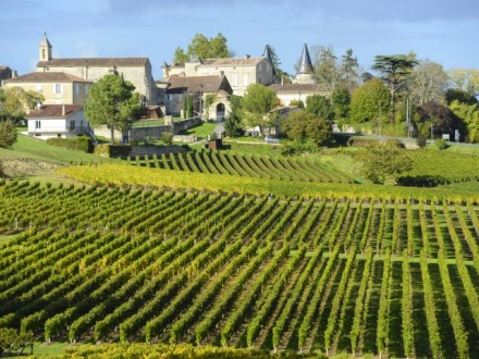full day wine tour bordeaux saint emilion